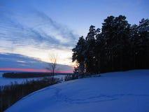 La foresta di inverno immagini stock
