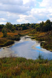 La foresta e la sua riflessione sull'acqua Immagini Stock Libere da Diritti