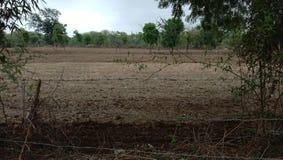 la foresta indiana ha frantumato il ricciolo del villaggio dei campi fotografie stock libere da diritti