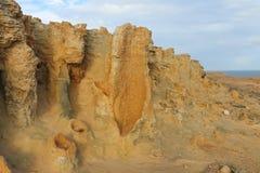 La foresta petrificata è una formazione rocciosa naturale di calcare Fotografia Stock Libera da Diritti
