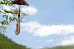 La foresta pluviale tropicale a Sanya, Cina appende una marca di amore fotografia stock