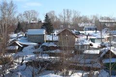 La foresta siberiana di inverno del paesaggio splendido con gli alberi di betulla nella neve fra le derive bianche immagine stock