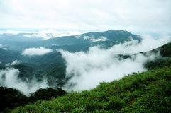 La foresta tropicale delle alte montagne con le nuvole che passano in India Fotografie Stock Libere da Diritti