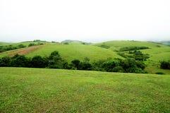 La foresta tropicale delle alte montagne con le nuvole che passano in India Immagini Stock Libere da Diritti
