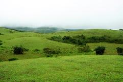 La foresta tropicale delle alte montagne con le nuvole che passano in India Fotografia Stock