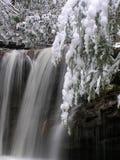 La fork del pantano cae, el parque de estado de las caídas del gemelo, WV #3 Fotos de archivo