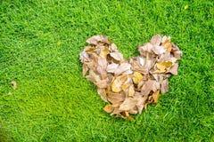 La forma del corazón hecha de la hoja seca Imagenes de archivo
