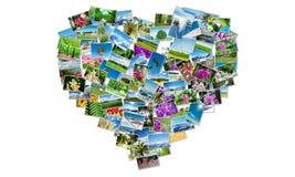 La forma del cuore fatta delle foto della natura Fotografie Stock