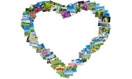 La forma del cuore fatta delle foto della natura Fotografia Stock Libera da Diritti
