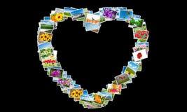 La forma del cuore fatta delle foto della natura Immagini Stock