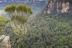 La formación de roca famosa de tres hermanas en el Na azul de las montañas Foto de archivo libre de regalías