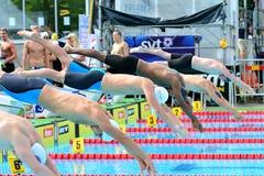 La formación en una plataforma de lanzamiento de la nadada Fotografía de archivo libre de regalías