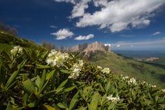 La formación y el movimiento de nubes sobre las cuestas del verano de Adygea Bolshoy Thach y las montañas del Cáucaso Fotos de archivo libres de regalías