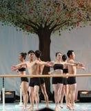 La formation pour le concert barre-de base d'obtention du diplôme de classe de danse de l'université -2011 de la Chine Jiaotong d Photo stock