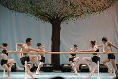 La formation pour le concert barre-de base d'obtention du diplôme de classe de danse de l'université -2011 de la Chine Jiaotong d Image stock
