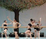La formation pour le concert barre-de base d'obtention du diplôme de classe de danse de l'université -2011 de la Chine Jiaotong d Images libres de droits