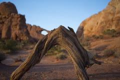 La formazione rocciosa dell'arco incurva la sosta nazionale Fotografie Stock