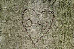 La forme de coeur avec des initiales a découpé dans l'arbre Image stock