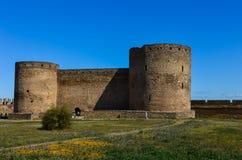 La fortezza Immagine Stock
