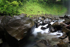 La Fortuna environment Royalty Free Stock Image