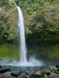 La Fortuna Waterfall, Costa Rica stock images