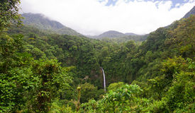 La Fortuna Waterfall Royalty Free Stock Image
