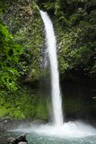 La Fortuna waterfall splashes down amidst lush foliage. royalty free stock image