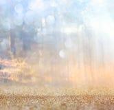 La foto abstracta de la explosión de la luz entre árboles y bokeh del brillo se enciende se empaña y se filtra la imagen Fotografía de archivo libre de regalías