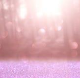 La foto abstracta de la explosión de la luz entre árboles y bokeh del brillo se enciende se empaña y se filtra la imagen Imagenes de archivo