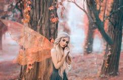 La foto brillante del verano con los rayos brillantes del sol, hada misteriosa del bosque cayó en amor con el príncipe, muchacha  fotos de archivo libres de regalías