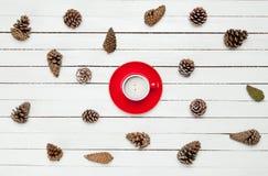 La foto de la taza de café roja cerca secó conos hermosos en ganado Fotos de archivo libres de regalías