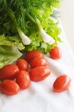 La foto del primo piano delle verdure Fotografia Stock