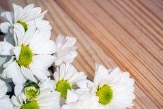 La foto del primo piano di bella molla bianca fiorisce sui precedenti di legno fotografia stock