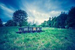 La foto del vintage de la abeja encorcha en rastro en paisaje rural Fotografía de archivo libre de regalías