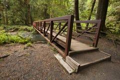 La foto granangular del extremo del puente de la naturaleza cerca de Marymere cae, parque nacional olímpico Fotos de archivo