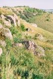 La foto lateral de las montañas demasiado grandes para su edad con la hierba verde, hierbas, pequeñas flores amarillas Imagen de archivo libre de regalías