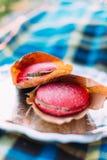 La foto lateral del primer de las dos hamburguesas deliciosas con el pan rosado situado en la tela escocesa azul Fotos de archivo libres de regalías