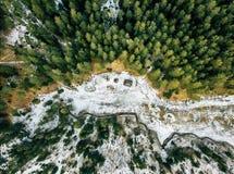 La fotografía aérea de un bosque en invierno, remata abajo de la visión Fotografía de archivo libre de regalías