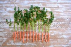 La fotografía creativa de la comida, escogió recientemente zanahorias orgánicas con los tops de la zanahoria fotografía de archivo