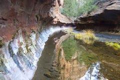 La fourchette occidentale du canyon de Creen de chêne en rouge bascule le parc d'état Sedona Arizona Images libres de droits