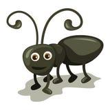 La fourmi mignonne Images libres de droits