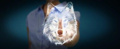 La fractale émouvante de personne a mis en danger le renderin de l'illustration 3D de loup Photos stock