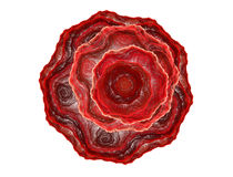La fractale rouge abstraite a monté Images libres de droits