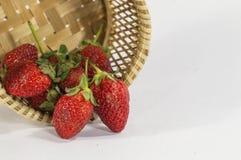 La fragola fruttifica fondo bianco isolato merce nel carrello dei dettagli Fotografia Stock