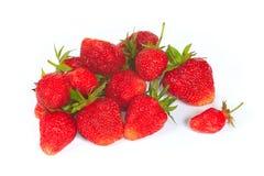 La fragola rossa dolce fresca Fotografia Stock