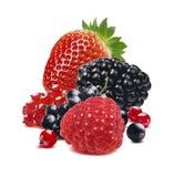 La fraise et d'autres baies se mélangent d'isolement sur le blanc images libres de droits