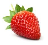 La fraise a isolé photos libres de droits