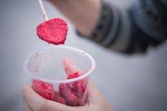 La fraise porte des fruits des détails à l'arrière-plan blanc d'isolement par panier Images stock