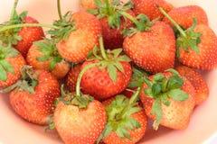 La fraise soit fraîche, placé sur le disque Photos stock