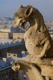 La France - Paris - Notre Dame photos stock